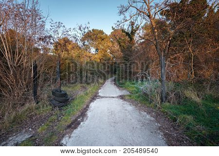 Abandoned road with large opened rusty gate