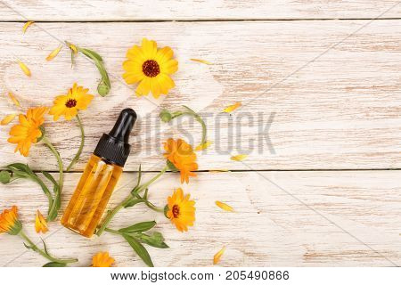 aromatherapy essential oil with marigold flowers on white background with copy space for your text. Top view.