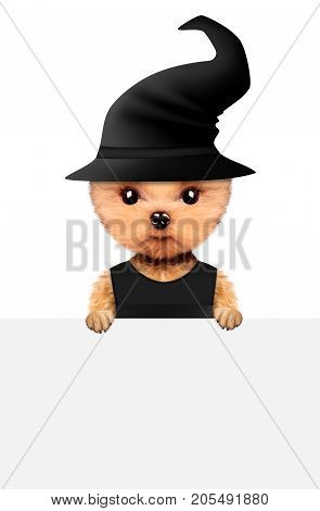 Funny cartoon animal keep a banner. Halloween and Dead day concept. Realistic 3D illustration.
