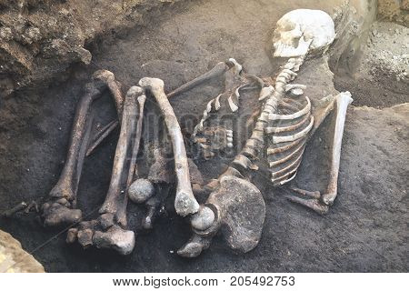 Archaeological excavations and finds (bones of a skeleton in a human burial) a detail of ancient research prehistory.