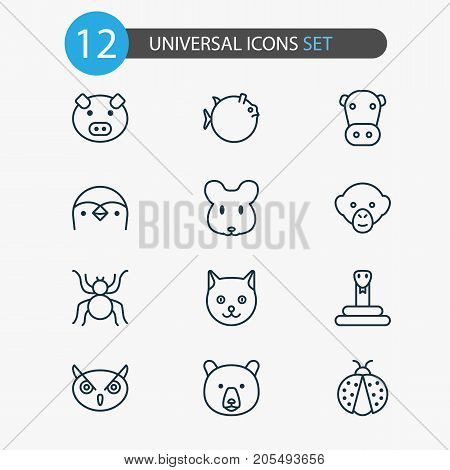 Nature Icons Set. Collection Of Grizzly, Rat, Kine And Other Elements