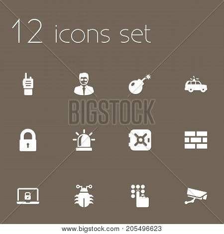 Collection Of Walkie-Talkie, Dynamite, Strongbox And Other Elements.  Set Of 12 Security Icons Set.