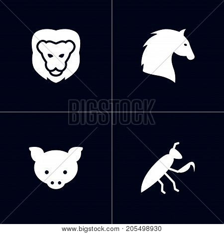 Collection Of Wildcat, Steed, Hog And Other Elements.  Set Of 4 Animal Icons Set.