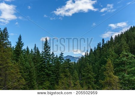 Mountain Far Away Through The Forest With Blue Sky And White Clouds Summer Landscape.