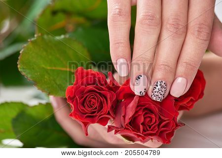 Female hands holding red roses. Beautiful womans hands with beige manicure holding flowers. Female treatment and beauty.