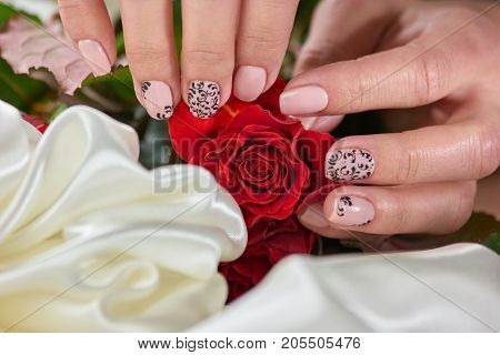 Female manicure hands, roses, silk. Young womans hands with manicure holding roses lying on white silk. Concept of destiny and sweet memories.
