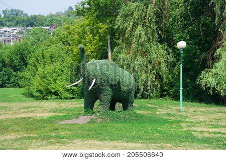 Green elephant of green plants, bushes  trimmed into elephant shape, decorative design of parks, landscape design