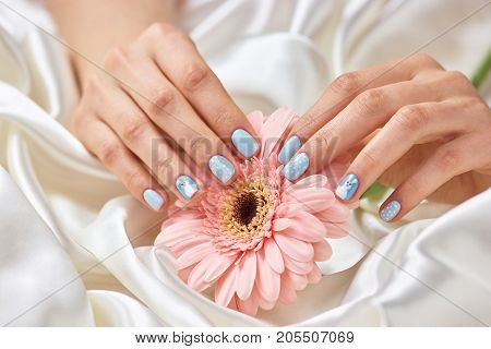 Female manicured hands holding gerbera. Beautiful woman hands with winter design manicure holding peach color gerbera flower. Feminine delicacy and ternderness.
