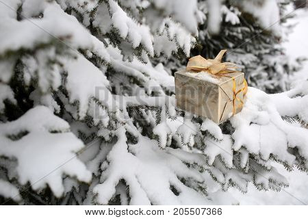 Present box with golden ribbon and bow on snowy background. Christmas gift on branch with white snow. Fir trees in winter forest. xmas and new year surprise. Holidays celebration concept