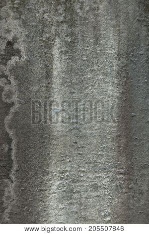 Cemetery Tombstone Texture