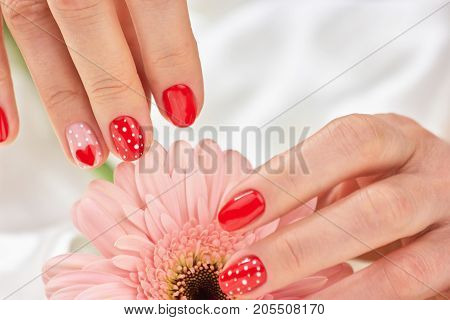 Young woman hands with manicure. Female hands with romantic manicure touching petals of gentle gerbera. Womans delicate manicure. Women dotted manicure with hearts.