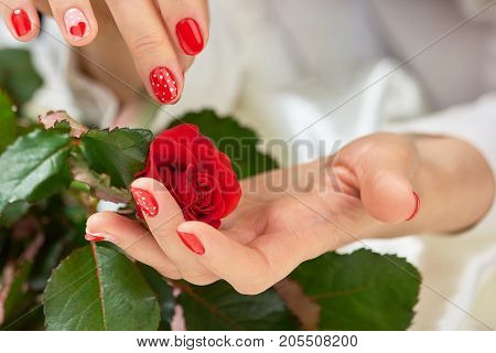 Red fresh rose in female hands. Young woman hands with red patterned manicure holding beautiful bud of red rose. Feminine beauty and love.
