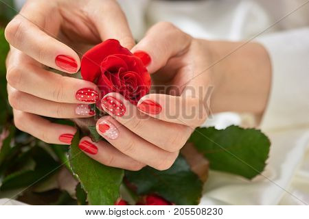 Re rose in beautiful female hands. Young woman hands with manicured nails holding beautiful red rose. Red manicure and red rose in hands.