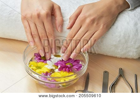 Beautiful female hands in aroma bath. Woman hands in glass bowl with water and flowers. Manicure and hands spa.