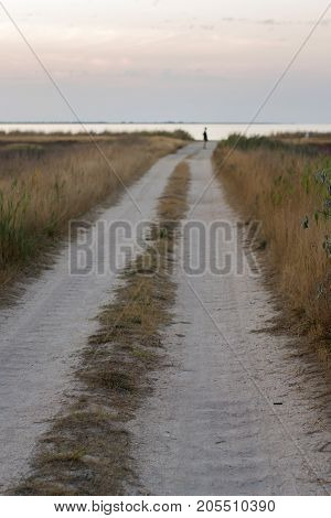 Silhouettes of a girl at the end of a sandy road