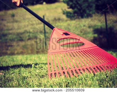 Orange Rake On Stick Collecting Grass, Garden Tools