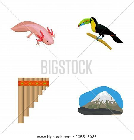 Sampono Mexican musical instrument, a bird with a long beak, Orizaba is the highest mountain in Mexico, axolotl is a rare animal. Mexico country set collection icons in cartoon style vector symbol stock illustration .