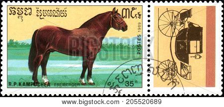 R.P. KAMPUCHEA - CIRCA 1989: A stamp printed in R.P. Kampuchea shows a Freiberger horse, series breeds of horses