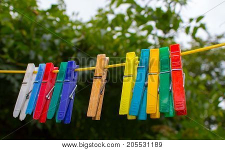 Colorful clothespins hanging on a clothesline. The pegs are made of plastic only one in the middle is an extraordinary wooden. In the background are the trees.