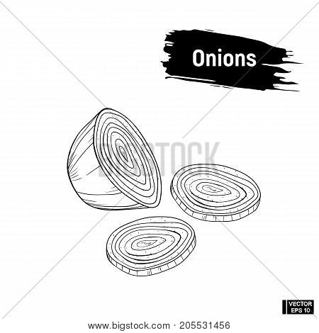 Onions Outline Hand Drawing