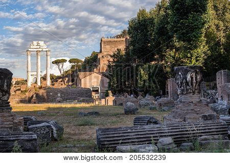 Rome, Italy - August 22, 2016:  View of Forum of Rome a sunny summer day in Rome. It was for centuries the center of Roman public life.