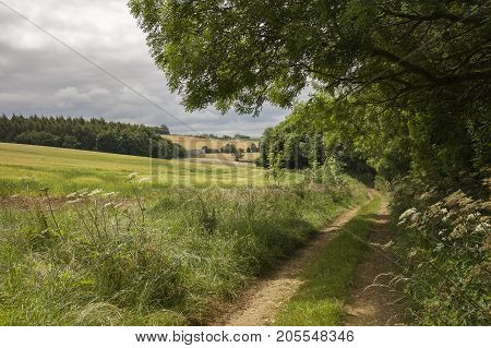 Pretty track in rural Cotswolds countryside, Gloucestershire, England.