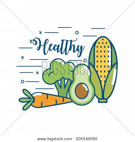delicious healthy organic food nutrition vector illustration