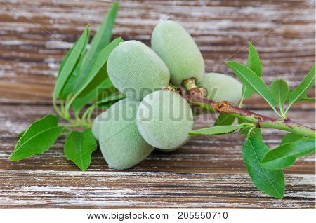 Green Almond Nuts Background