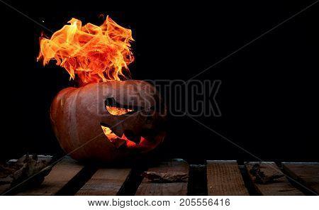A Very Dangerous Dangerous Halloween Pumpkin, With A Stern Gaze And A Smirk Of A Villain, In The Dar