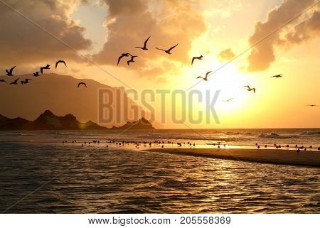 Sunset At The Beach Of Qalansiya On The Island Of Socotra
