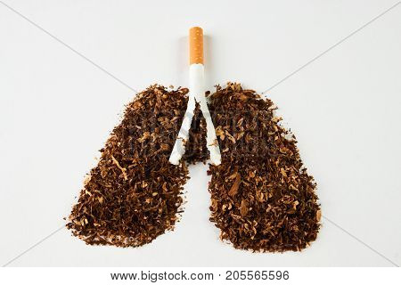 Cigarette Smoker's Lungs Isolated On White Background