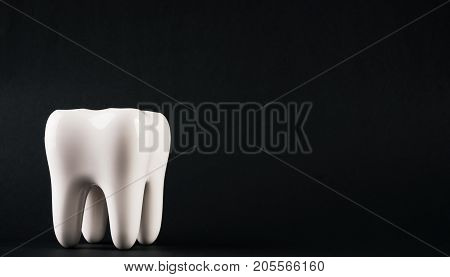 White Healthy Human Tooth Isolated On A Black