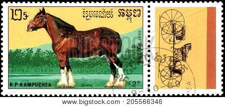 R.P. KAMPUCHEA - CIRCA 1989: A stamp printed in R.P. Kampuchea shows a Shire horse, series breeds of horses