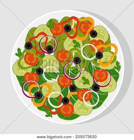 Salad with fresh vegetables in a white flat plate. Tomatoes, cucumbers, onions, bell peppers, black olives, lettuce, spinach. Vegetarian salad, vector illustration