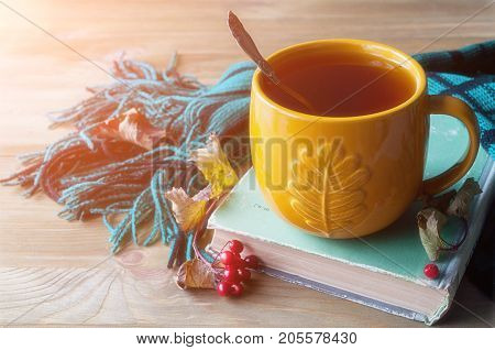 Fall background with cup of tea, old book and warm scarf. Fall still life with concept of spending fall time at cozy home. Fall background. Fall still life. Fall season concept. Fall composition