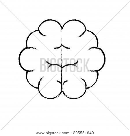 figure brain human anatomy organ of inteligence vector illustration
