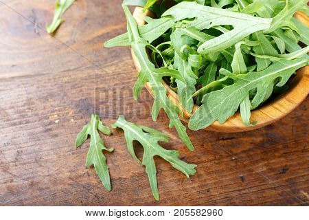 Arugula chopped in a plate fresh organic greens organic product rich in trace elements and vitamins