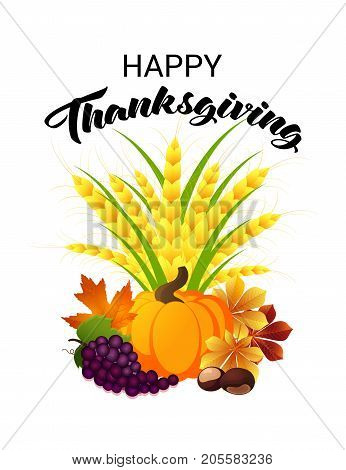 Happy Thanksgiving Day greeting card. Vector illustration of a cartoon golden wheat sheaf with a pumpkin grape chestnuts and maple leaves. Symbols of Harvesting.
