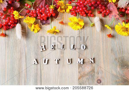 Autumn background with Hello Autumn letters and autumn seasonal berries and autumn flowers on the wooden background. Autumn concept. Autumn background. Hello Autumn still life