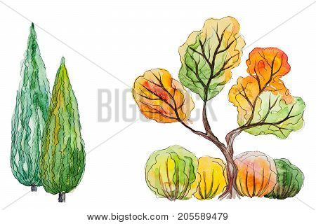 Watercolor hand drawn watercolor autumn background with orange, green trees, thuja and shrubs, isolated on the white horizontal background