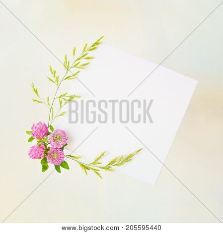 Scrapbook page of wedding or family photo album frame with pink clover and green bluegrass on old yellowed paper background; top view flat lay overhead view