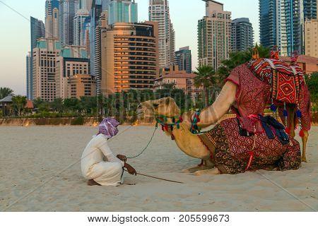 Camel Beach