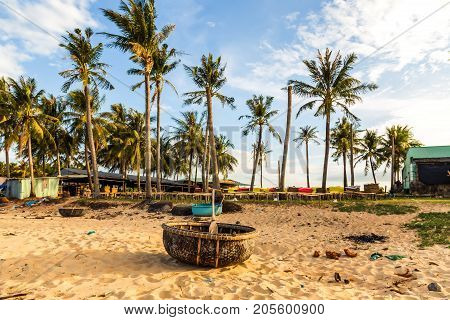 Coconut Palm tree on the sandy beach and vietnamese braided boat.