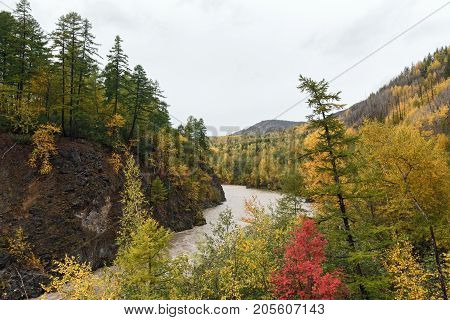 Beautiful Kamchatka landscape: picturesque mountain river flowing among roky mountain through the colorful forest in autumn season. Eurasia Russian Far East Kamchatka Peninsula.