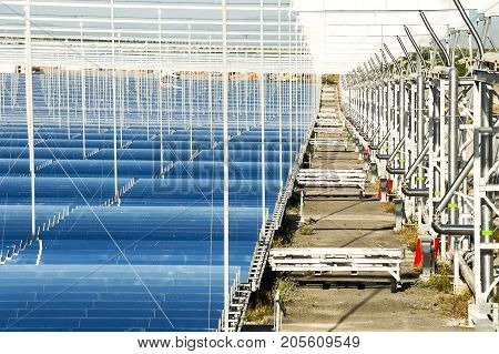 Renewable Energy: Solar: The Newest And The Cleanest Way To Produce Energy