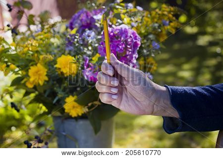 Female artist measuring proportions with pencil a bunch of beautiful flowers in the blurred background