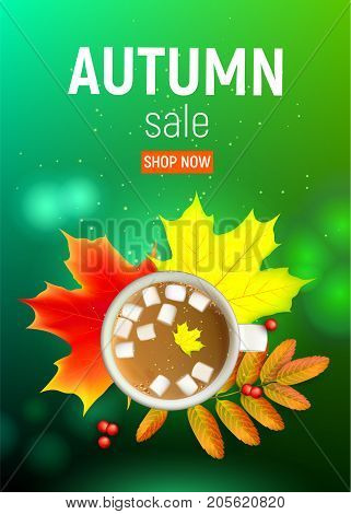 Sales banner with maple autumn leaves and rowan branches with ashberry and cup of coffee with marshmallow on a green background. Autumn maple leaf and rowan branches with ashberry and cup of coffee with marshmallow on a green background. Vector illustrati