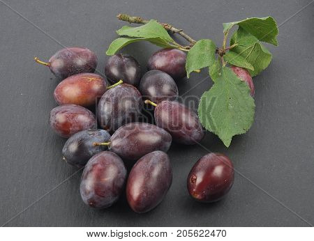 Plum With Twig And Leaves On Slate