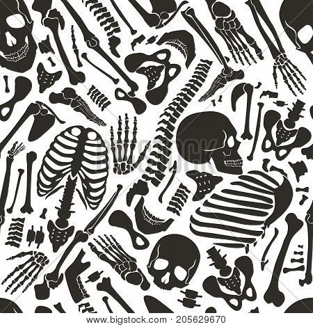 Vector human skeleton seamless pattern with skulls and other various single human parts bones