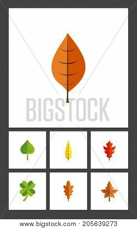 Flat Icon Foliage Set Of Leafage, Foliage, Linden And Other Vector Objects